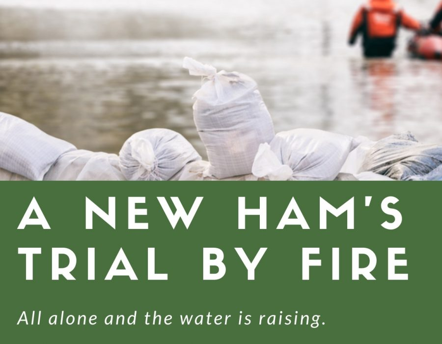 New Ham